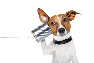 Anrufbeantwortersprueche